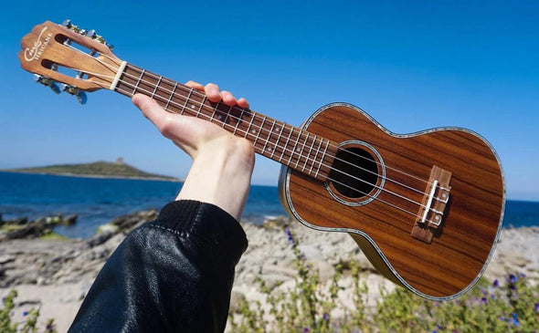 Hricane Teaches You How to Choose the Ukulele That Suits You?
