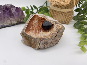 Garnet in the Matrix | Garnet Crystals | January Birthstone | Rocks & Minerals | Mineral Specimen