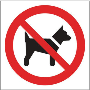 Sign No Dogs Pictorial 100x100 Vinyl
