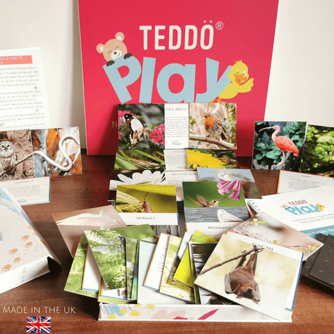 Teddo PLay Learning Cards - Beautiful Birds & Insects (facts edition)
