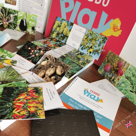 Teddo PLay Learning Cards - Where Our Food Grows