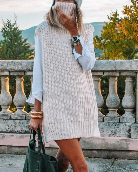 Casual Pile Collar High-collared Sweaters Mini Dresses