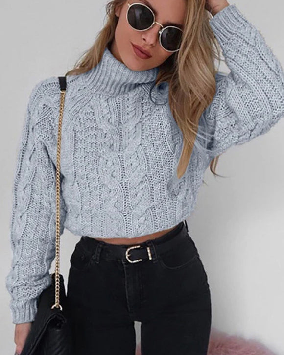 Casual Twist Bat Sleeve Crop Knitting Sweater