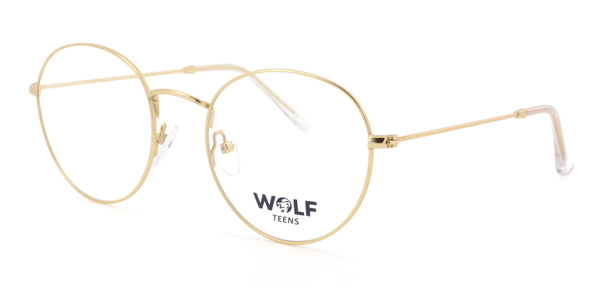 Childrens and Teens Glasses - Wolf T029