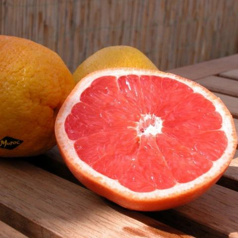 Image of Grapefruit Organic Essential Oil