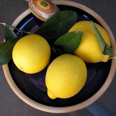 Image of Lemon Organic Essential Oil