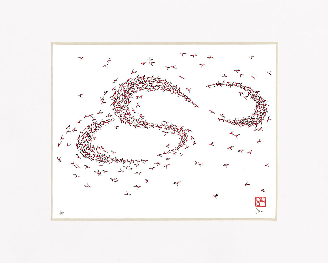 11x14 Limited Edition Print - Murmuration Series