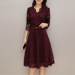 V Neck Lace Skater Dress