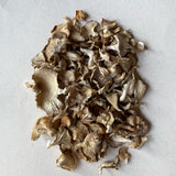 Organic Dried Oyster Mushrooms