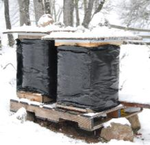 Preparing Your Hives for Winter