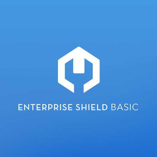 DJI Enterprise Shield Basic (Matrice 210 RTK)