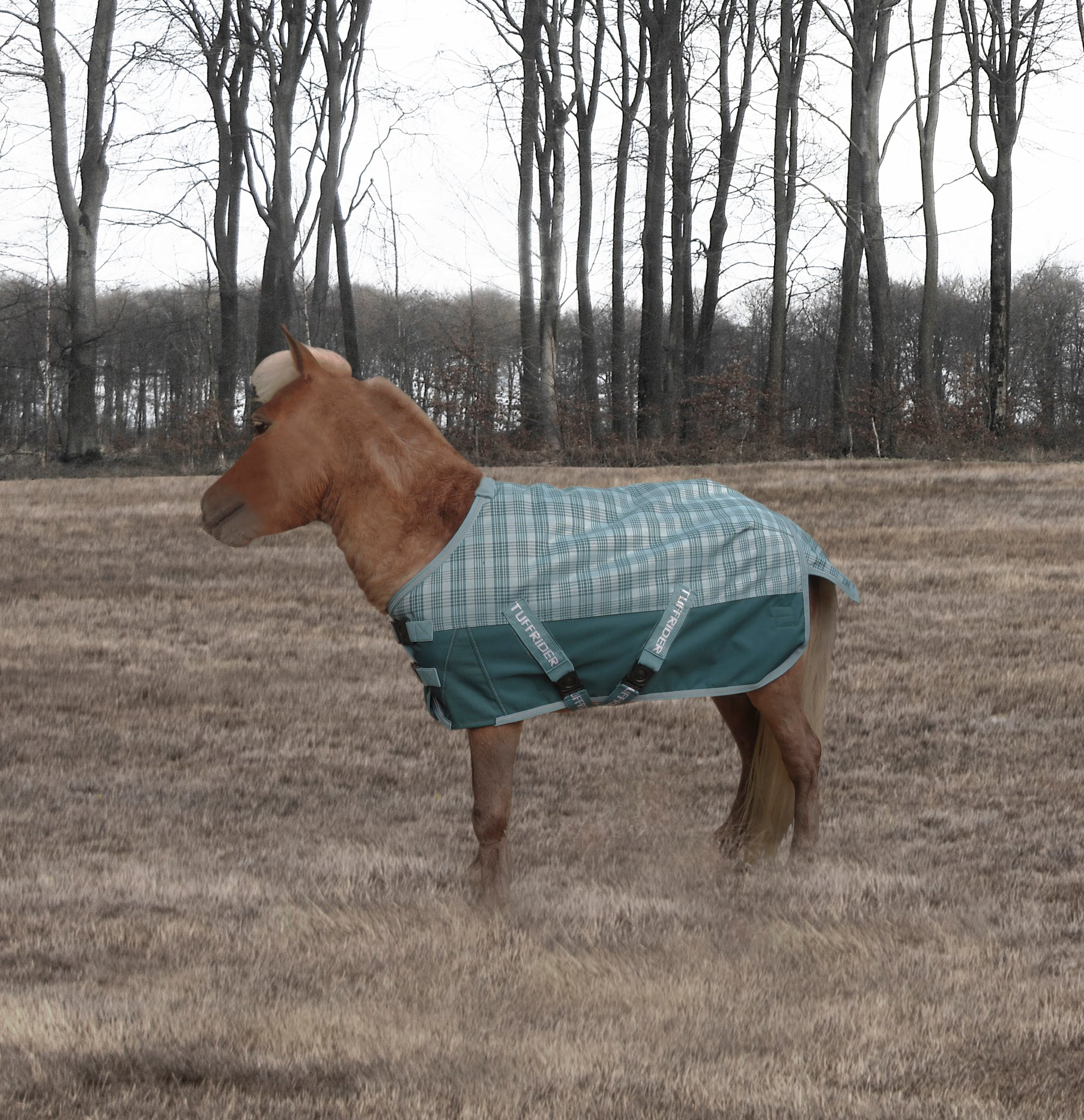 1200D Ripstop 220gms Medium Weight Mini Turnout Blanket - TuffRider - Breeches.com