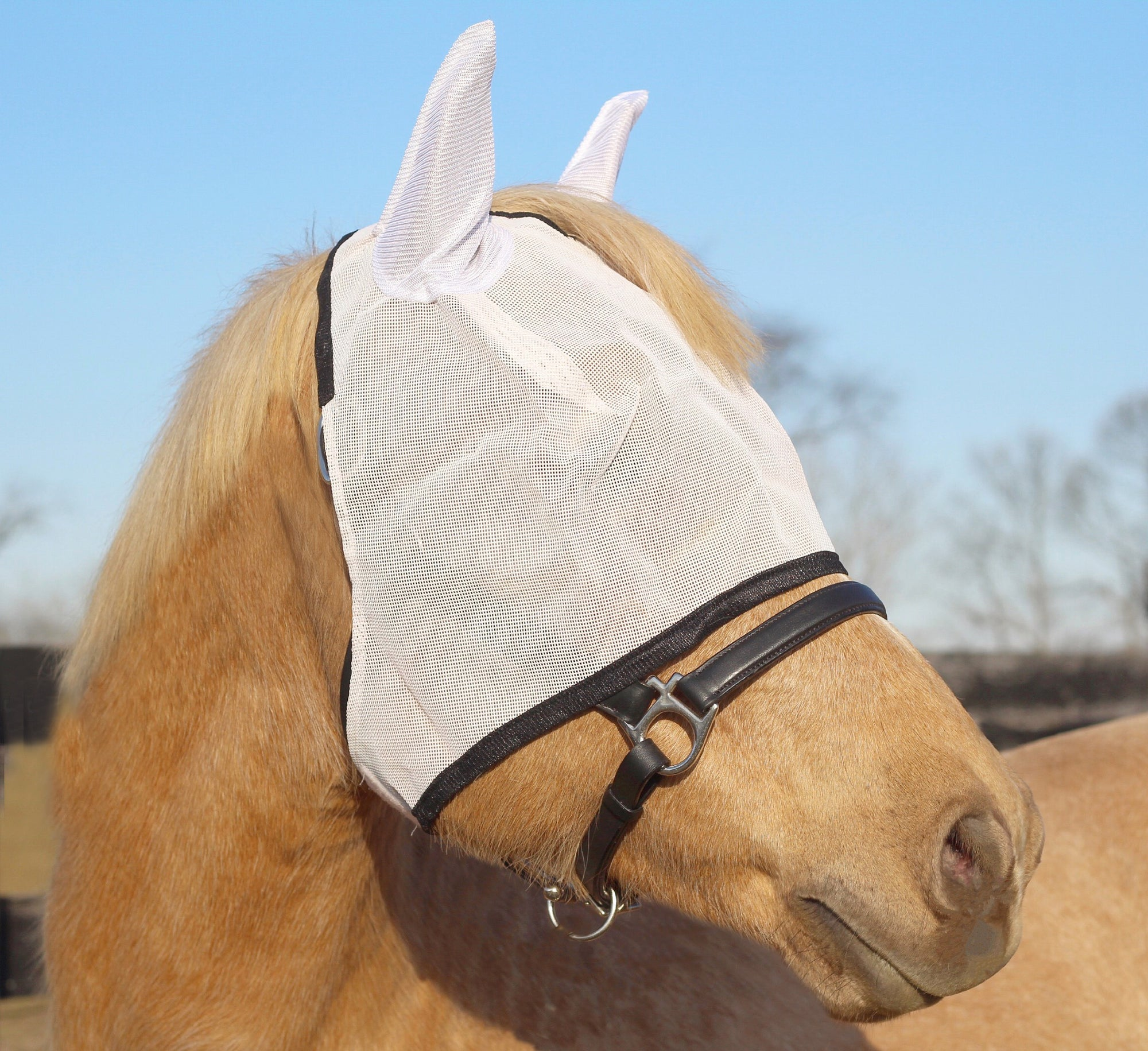 TuffRider Fly Masks with Ears_1