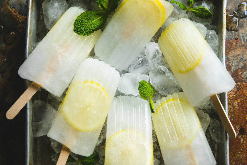 Lemon And Mint ZMA Ice Blocks