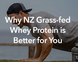 Why NZ Grass-Fed Whey Protein is Better for You