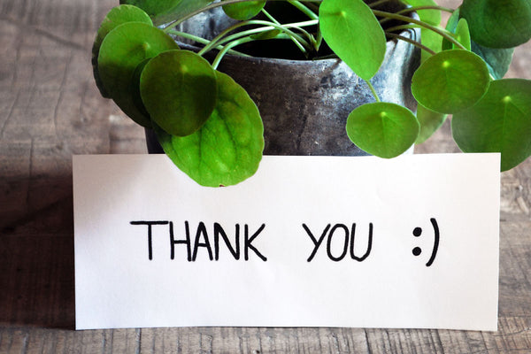 4 ways to show Gratitude this Holiday season
