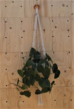 Load image into Gallery viewer, Macrame Pot Hanger - Ayra