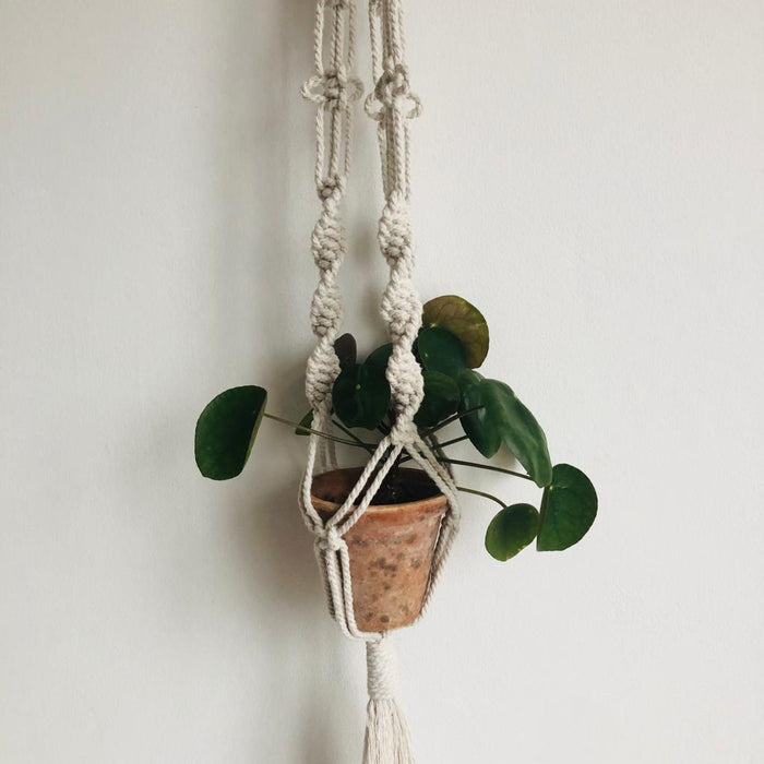 DIY Macrame Pot Hanger Kit