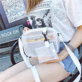Chick Sheer Handbag