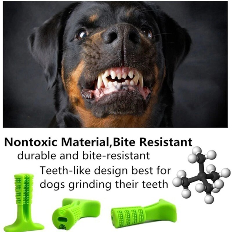 Stress-free Diy Dog Toothbrush