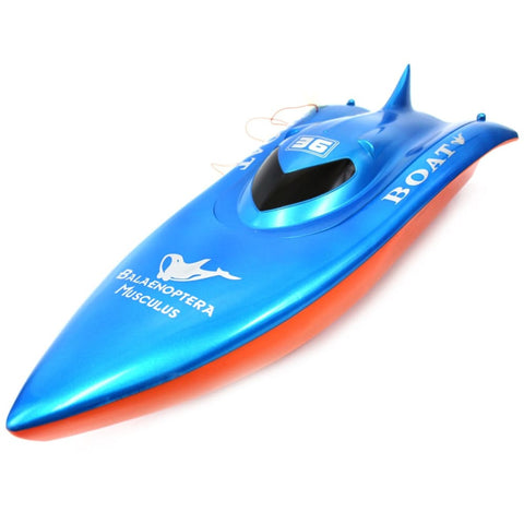 Image of 23 Balaenoptera Musculus Racing Boat YL