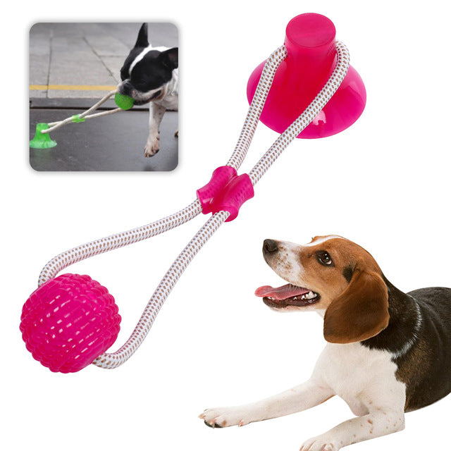 Multifunction Pet Molar with Suction Cup