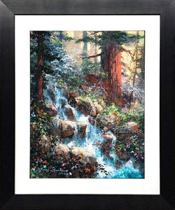 Sounds of Serenity of James Coleman (framed fine art on paper)