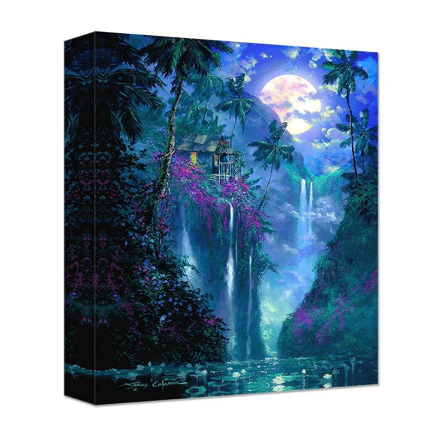 Aloha Dreams by James Coleman (wrapped canvas collectible)