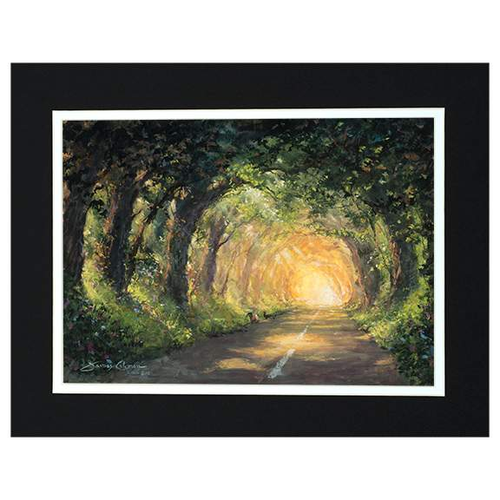 Lighting The Way Home by James Coleman (matted print)