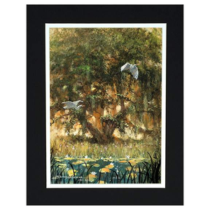 Spanish Moss by James Coleman (matted print)