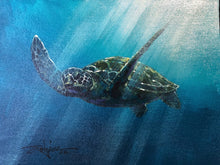Load image into Gallery viewer, Original study by Rodel Gonzalez (Sea Turtle Swimming)
