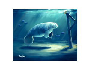 Curious Manatee by Rob Kaz (framed LE canvas giclee)