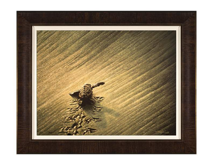 New Beginnings by Rodel Gonzalez (framed canvas giclee)