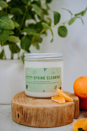 16 oz. Spring Cleaning Candle
