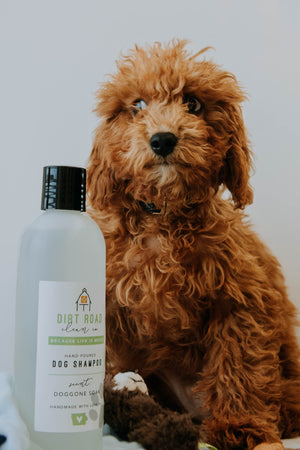 16 oz. Doggone Soak Dog Shampoo
