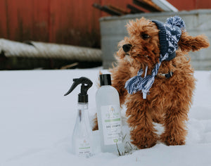 "8 oz. Bark & Splash Dog ""Re-Fresh"" Spray"