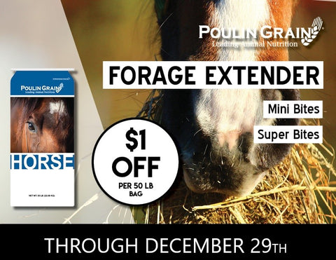 Forage Extender Special