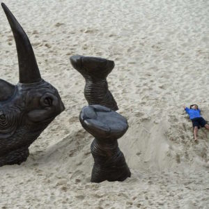 In Pictures: Australia's 20th Sculpture By The Sea exhibition