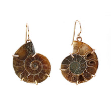 Load image into Gallery viewer, Ammonite Fossil Earrings