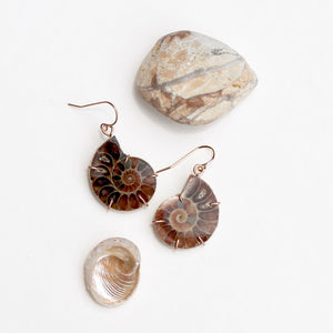 Ammonite Fossil Earrings