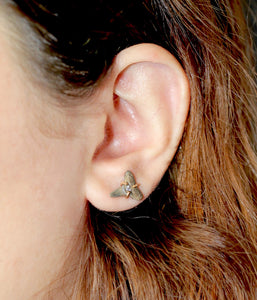 Fossilized Shark Tooth Studs