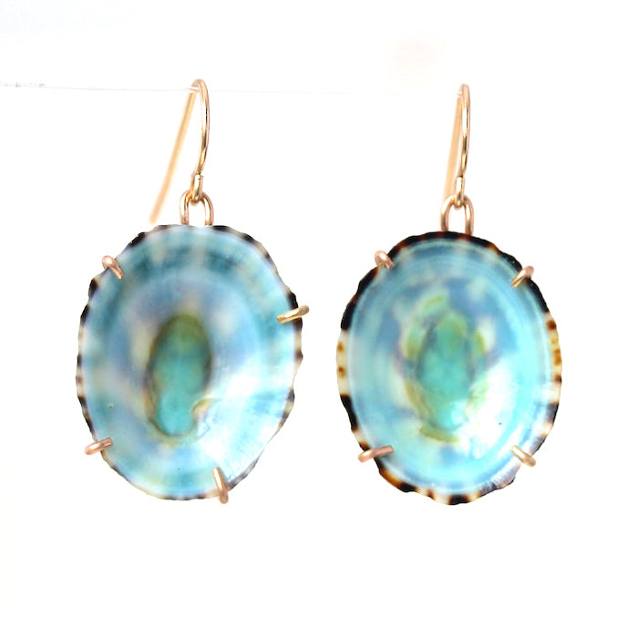 Green Limpit Shell Earrings