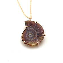 Load image into Gallery viewer, Ammonite Fossil Necklace