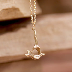 Cat Vertebrae Necklace