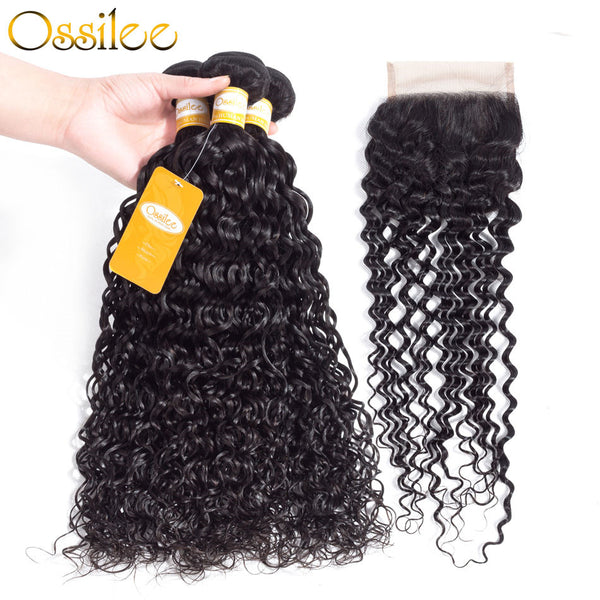 9A Malaysian Water Wave Human Virgin Hair With Closure - Ossilee Hair