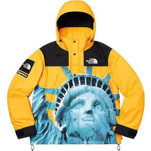Supreme x The North Face Statue of Liberty Jacket
