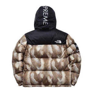 TNF x Supreme Down Jacket