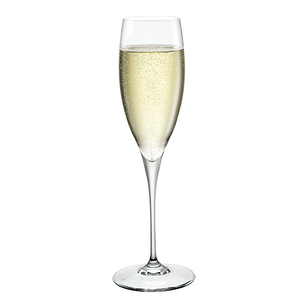 PREMIUM RANGE - CHAMPAGNE (Set of 12)
