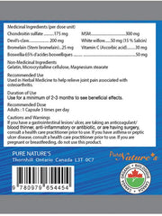 Arth Free Advanced Devil's Claw - 120 Capsules - PNC Pure Natures Canada