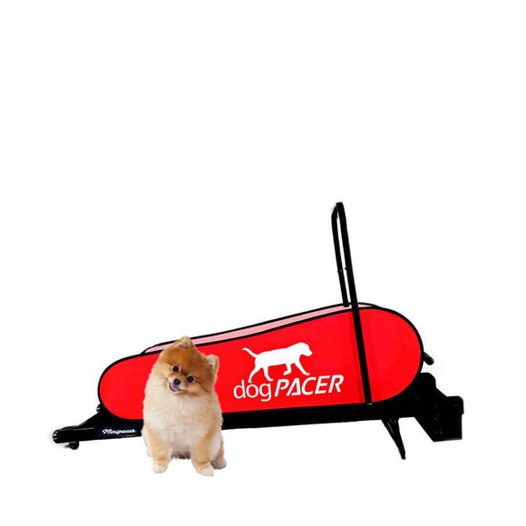 DogPacer Minipacer Dog Treadmill-Treadmill-Pet's Choice Supply